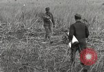 Image of C-47 aircraft Burma, 1944, second 18 stock footage video 65675061654
