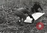 Image of C-47 aircraft Burma, 1944, second 38 stock footage video 65675061654