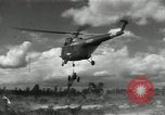 Image of United States Army Air Forces European Theater, 1956, second 40 stock footage video 65675061670