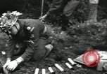 Image of United States Army Europe, 1956, second 39 stock footage video 65675061672