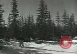 Image of United States Army preparation training drills in Cold War United States USA, 1956, second 57 stock footage video 65675061673