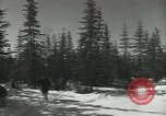 Image of United States Army preparation training drills in Cold War United States USA, 1956, second 61 stock footage video 65675061673