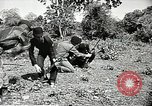 Image of United States soldiers Vietnam, 1964, second 23 stock footage video 65675061698