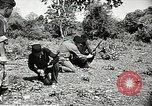 Image of United States soldiers Vietnam, 1964, second 24 stock footage video 65675061698