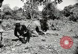 Image of United States soldiers Vietnam, 1964, second 25 stock footage video 65675061698