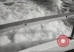 Image of Grey Whale California United States USA, 1966, second 19 stock footage video 65675061790