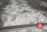Image of Grey Whale California United States USA, 1966, second 21 stock footage video 65675061790