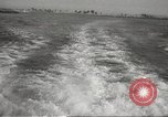 Image of Grey Whale California United States USA, 1966, second 22 stock footage video 65675061790