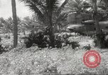 Image of United States troops Bong Son Vietnam, 1967, second 6 stock footage video 65675061806
