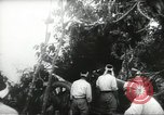 Image of Japanese troops Malay jungle Kuantan, 1942, second 21 stock footage video 65675061825