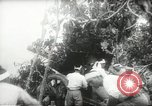 Image of Japanese troops Malay jungle Kuantan, 1942, second 22 stock footage video 65675061825