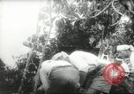 Image of Japanese troops Malay jungle Kuantan, 1942, second 23 stock footage video 65675061825