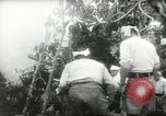 Image of Japanese troops Malay jungle Kuantan, 1942, second 25 stock footage video 65675061825