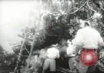 Image of Japanese troops Malay jungle Kuantan, 1942, second 26 stock footage video 65675061825