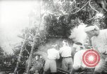 Image of Japanese troops Malay jungle Kuantan, 1942, second 27 stock footage video 65675061825