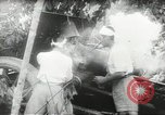 Image of Japanese troops Malay jungle Kuantan, 1942, second 33 stock footage video 65675061825