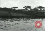 Image of Pearl Harbor attack Pearl Harbor Hawaii USA, 1941, second 38 stock footage video 65675061902