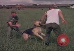 Image of 88th Military Police Corps Vietnam, 1965, second 10 stock footage video 65675061960