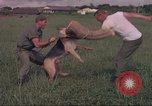 Image of 88th Military Police Corps Vietnam, 1965, second 14 stock footage video 65675061960