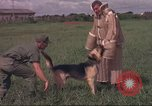 Image of 88th Military Police Corps Vietnam, 1965, second 40 stock footage video 65675061961