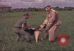 Image of 88th Military Police Corps Vietnam, 1965, second 44 stock footage video 65675061961