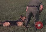 Image of 88th Military Police Corps Vietnam, 1965, second 48 stock footage video 65675061961