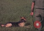 Image of 88th Military Police Corps Vietnam, 1965, second 49 stock footage video 65675061961