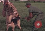 Image of 88th Military Police Corps Vietnam, 1965, second 61 stock footage video 65675061961
