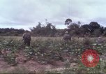 Image of 1st Infantry Division Vietnam, 1965, second 14 stock footage video 65675061976
