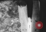 Image of Bombing of village during Spanish Civil War Spain, 1937, second 42 stock footage video 65675062087