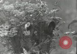 Image of Russian soldiers Russian Front, 1944, second 4 stock footage video 65675062181