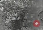 Image of Russian soldiers Russian Front, 1944, second 24 stock footage video 65675062181