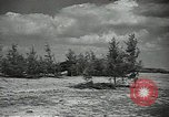 Image of Soviet warplanes camouflaged with pine tree limbs Soviet Union, 1941, second 15 stock footage video 65675062261