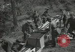 Image of Soviet warplanes camouflaged with pine tree limbs Soviet Union, 1941, second 58 stock footage video 65675062261