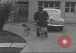 Image of kidnapping of Suzanne Degnan Chicago Illinois USA, 1945, second 26 stock footage video 65675063399