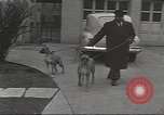 Image of kidnapping of Suzanne Degnan Chicago Illinois USA, 1945, second 27 stock footage video 65675063399