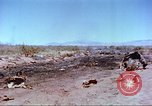Image of F-100 Super Sabre crash New Mexico United States USA, 1957, second 37 stock footage video 65675064975