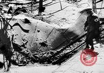 Image of threat of plague Germany, 1945, second 24 stock footage video 65675068489