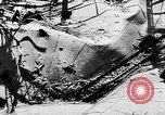 Image of threat of plague Germany, 1945, second 27 stock footage video 65675068489