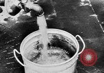 Image of threat of plague Germany, 1945, second 32 stock footage video 65675068489