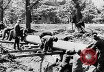 Image of threat of plague Germany, 1945, second 39 stock footage video 65675068489