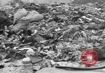 Image of threat of plague Germany, 1945, second 41 stock footage video 65675068489