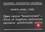 Image of beauty treatments for dogs Portland Oregon USA, 1931, second 1 stock footage video 65675070930