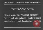 Image of beauty treatments for dogs Portland Oregon USA, 1931, second 4 stock footage video 65675070930