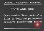 Image of beauty treatments for dogs Portland Oregon USA, 1931, second 5 stock footage video 65675070930