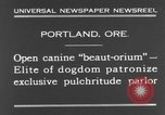 Image of beauty treatments for dogs Portland Oregon USA, 1931, second 10 stock footage video 65675070930
