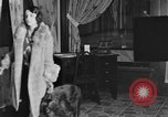 Image of beauty treatments for dogs Portland Oregon USA, 1931, second 19 stock footage video 65675070930