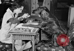 Image of beauty treatments for dogs Portland Oregon USA, 1931, second 22 stock footage video 65675070930