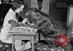 Image of beauty treatments for dogs Portland Oregon USA, 1931, second 24 stock footage video 65675070930
