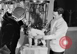 Image of beauty treatments for dogs Portland Oregon USA, 1931, second 41 stock footage video 65675070930